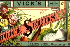 Seed packet Vicks